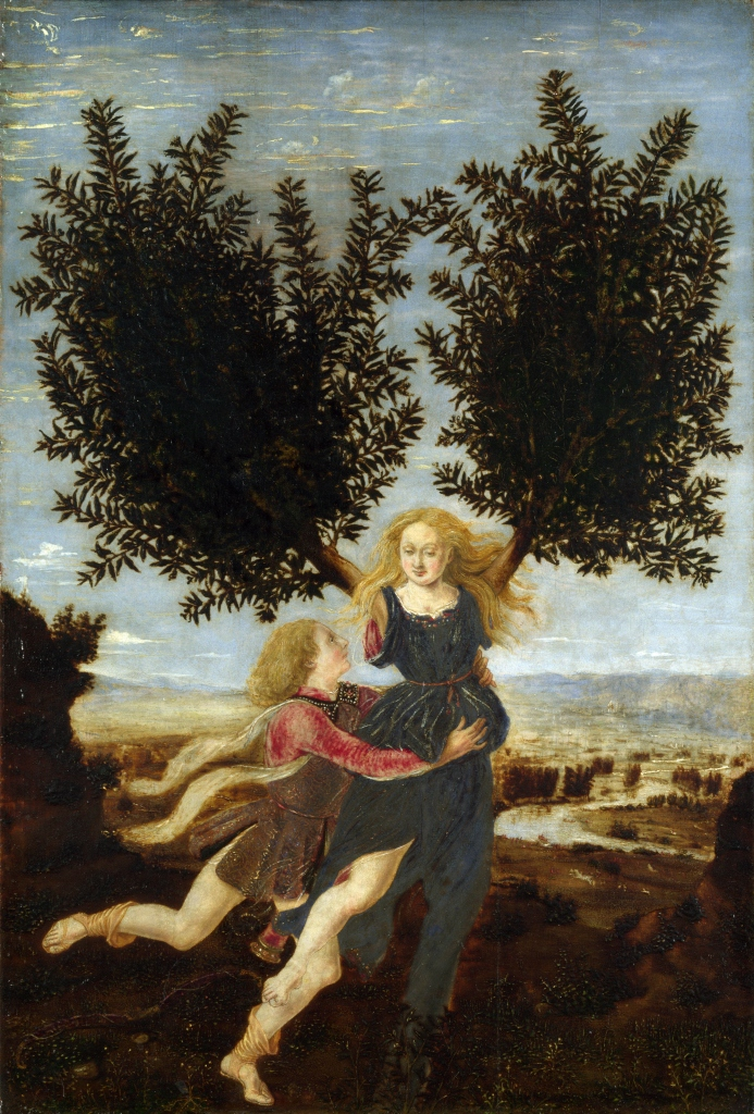 Antonio Pollaiuolo.  Apollo and Daphne.  One of many tales of transformation in the Metamorphoses,  Apoloo lusts after Daphne and she escapes him by turning into a bay laurel.