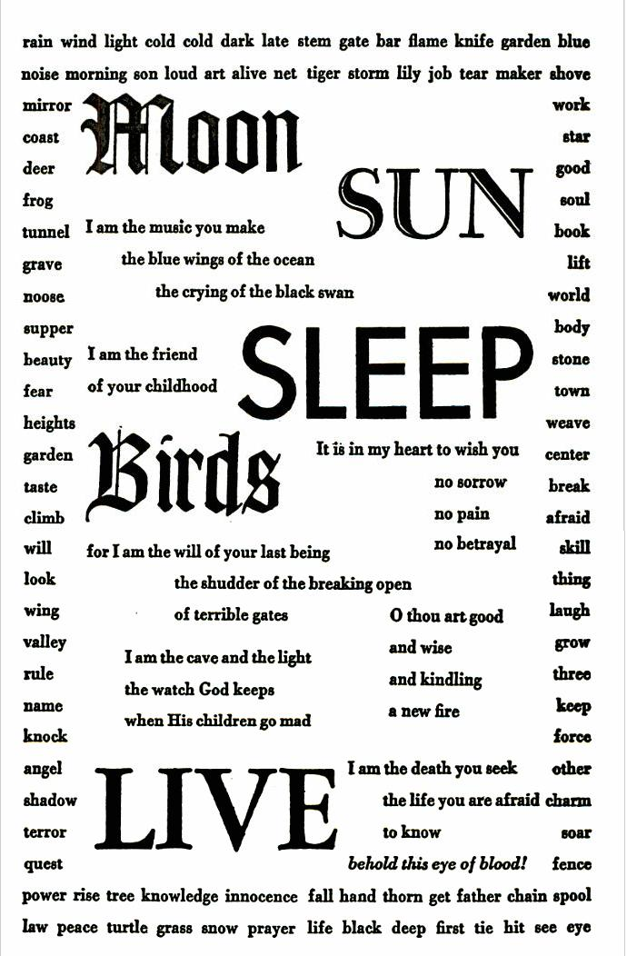 Moon,Sun,Sleep,Birds,Live
