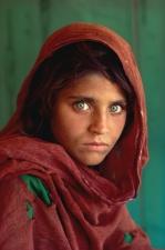 8202_web_Art-National-Geographic-1