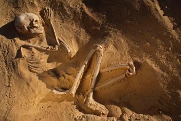 skeleton-woman-615
