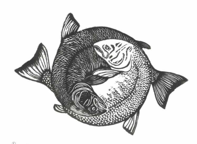 yin-yang-pisces-fish