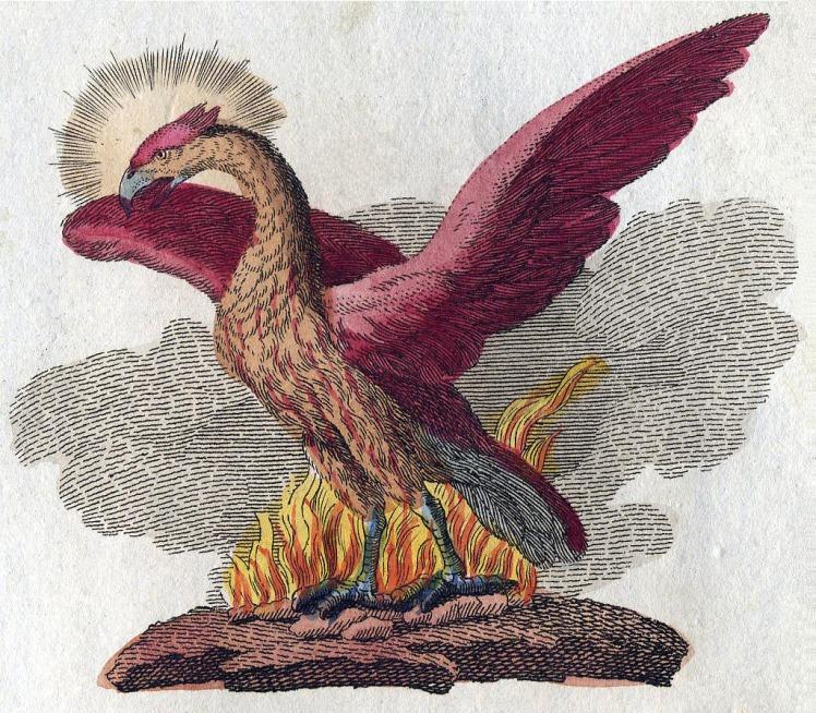 phoenix-fabelwesen