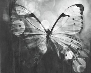 d16c518657877b48d3a54b63f3bb5b75--gypsy-soul-butterfly-kisses