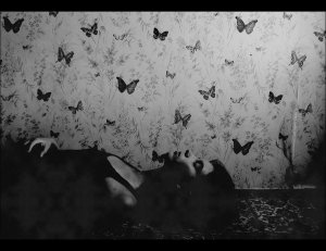 __the_last_butterfly_soul___by_p0a